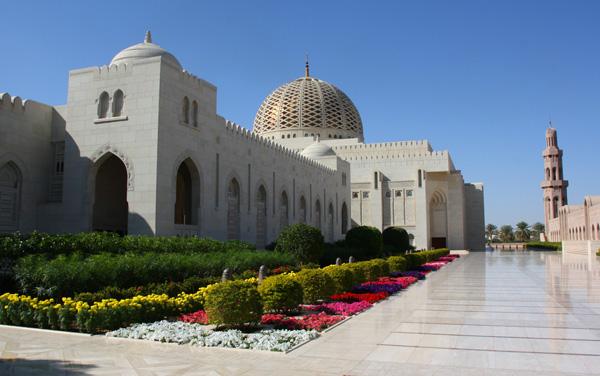 Dubai and India Shore Excursions