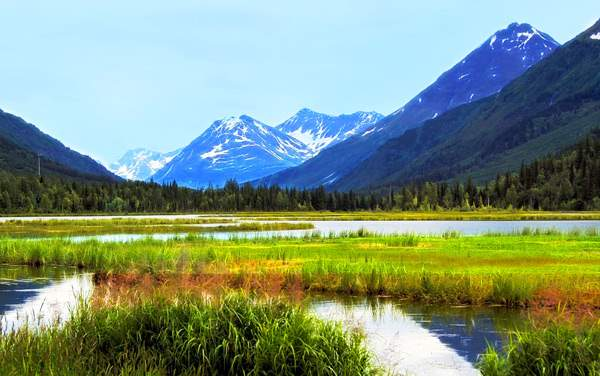 Cruises from Whittier (Anchorage), Alaska from $799*