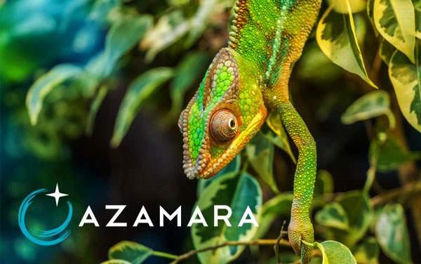 Azamara Africa cruises from $2,474*