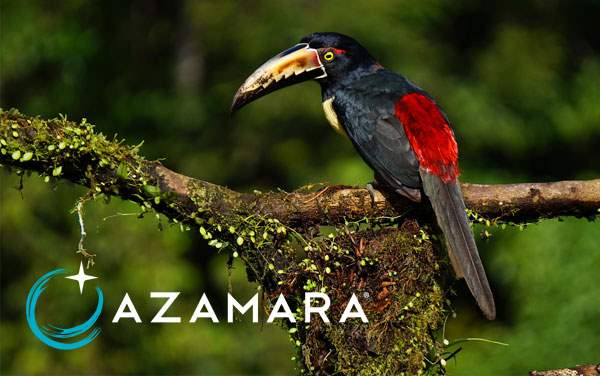 Azamara Panama Canal cruises from $3,849*