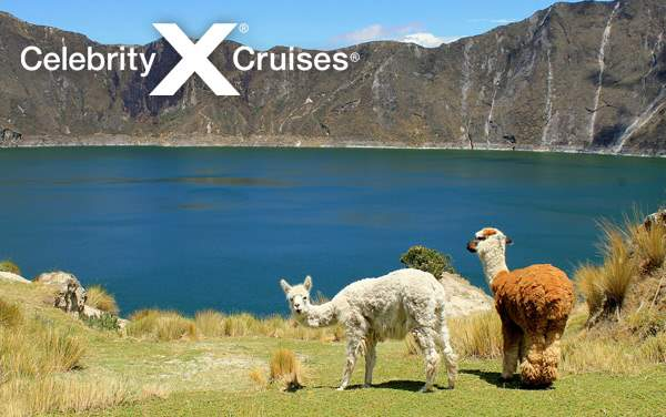 Celebrity South America cruises from $1,289*