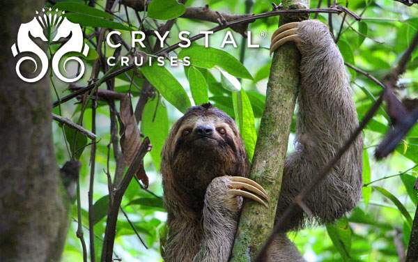 Crystal Panama Canal cruises from $6,400*
