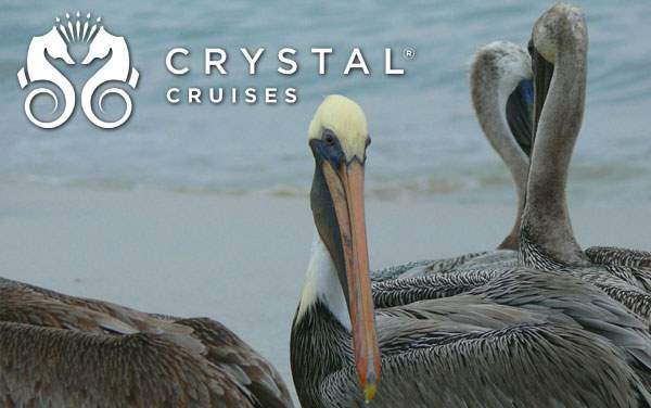 Crystal Mexican Riviera cruises from $1,605*