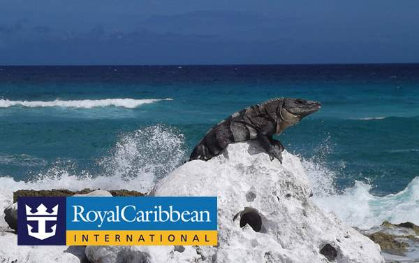 Royal Caribbean Western Caribbean cruises from $299*