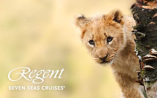 Regent Seven Seas Africa cruises from $12,299*