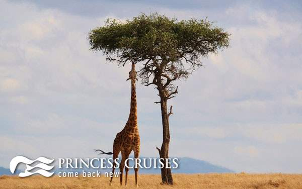 Princess Cruises Africa cruises from $5,329*