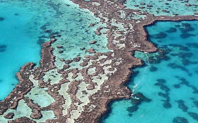 Colorful reefs off the coast of Australia