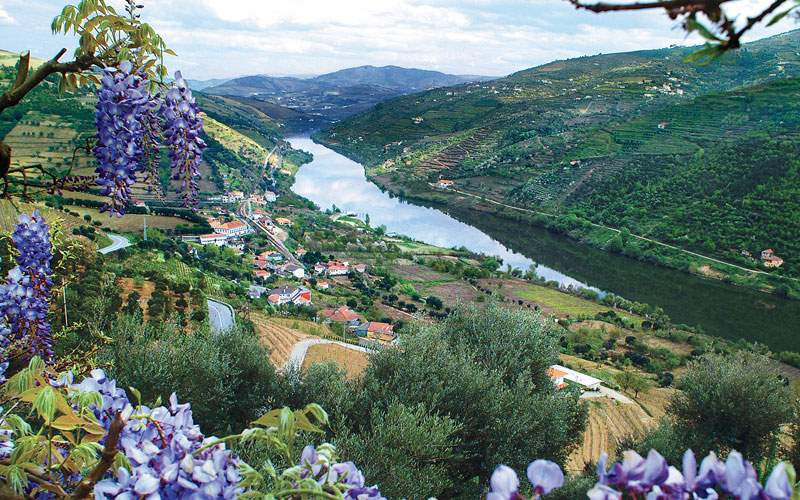 The Douro River Valley in Portugal