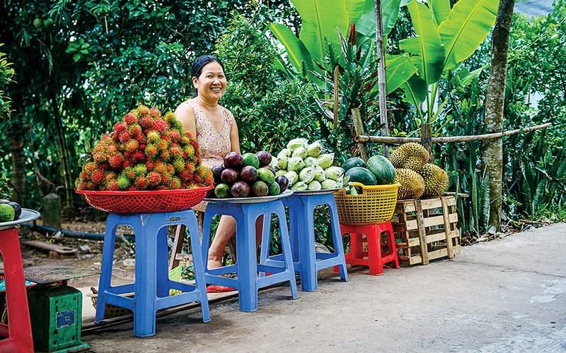 A roadside fruit vendor