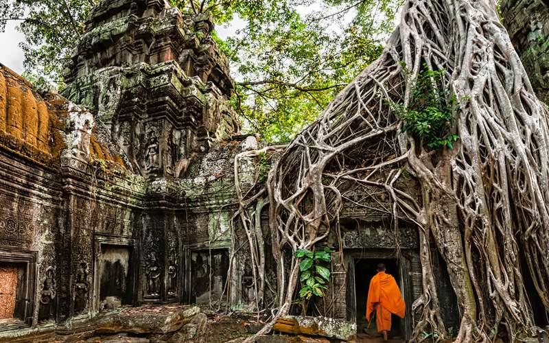 Buddhist monk at Angkor Wat, Cambodia