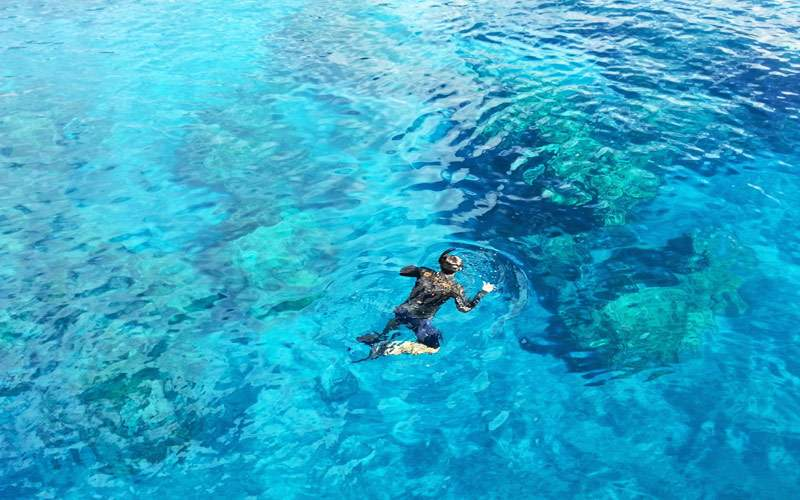 Snorkel in the Clear Waters in Hawaii