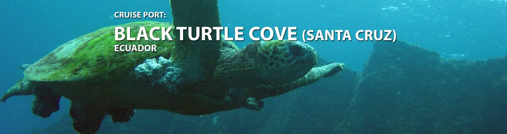 Black Turtle Cove, Ecuador Cruise Port