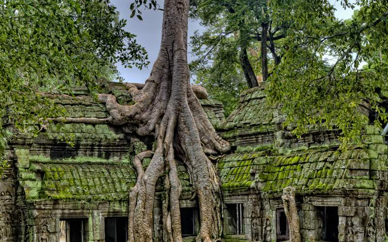 Angkor Wat Temple Celebrity Cruises