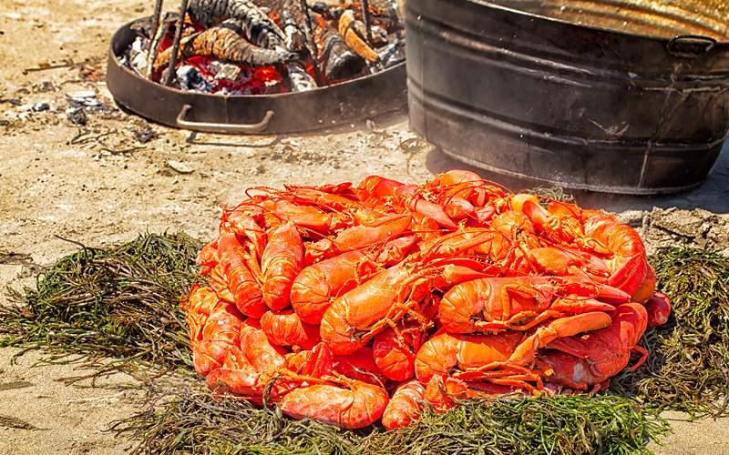Maine Lobster bake Celebrity Cruises New England