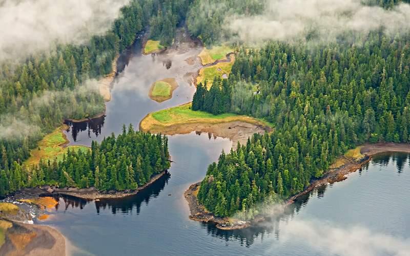 tongass temperate rainforest Celebrity Cruises