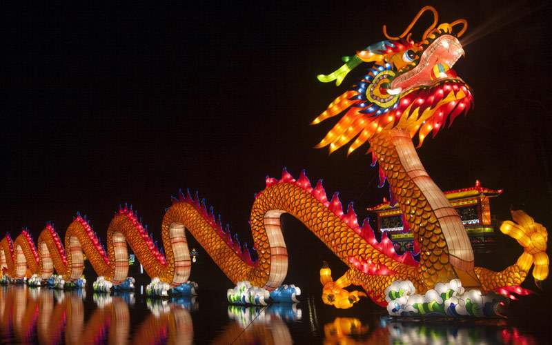 China Light Dragon