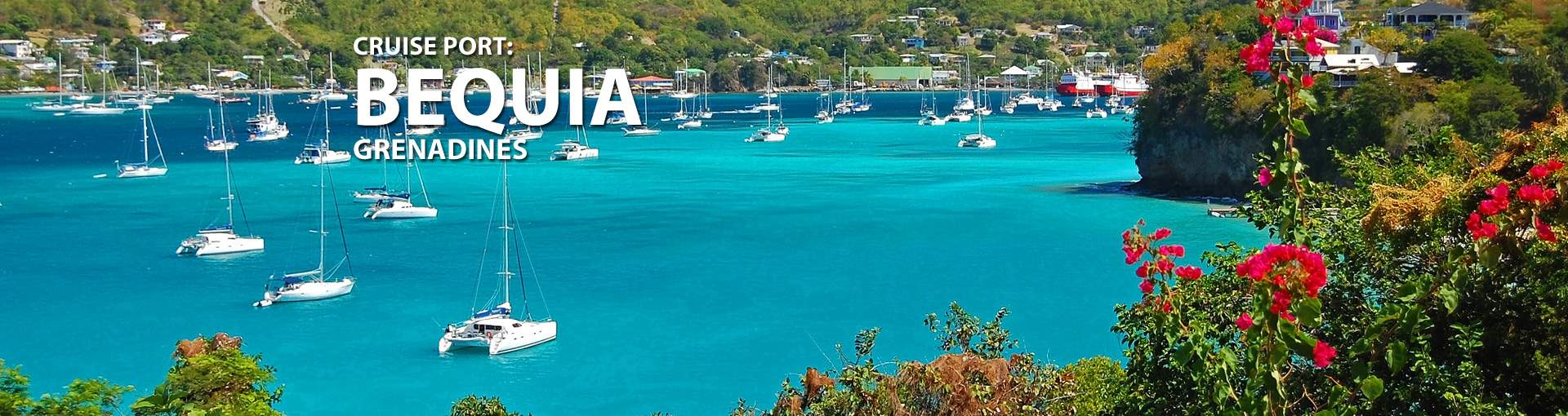 Cruises to Bequia, Grenadines
