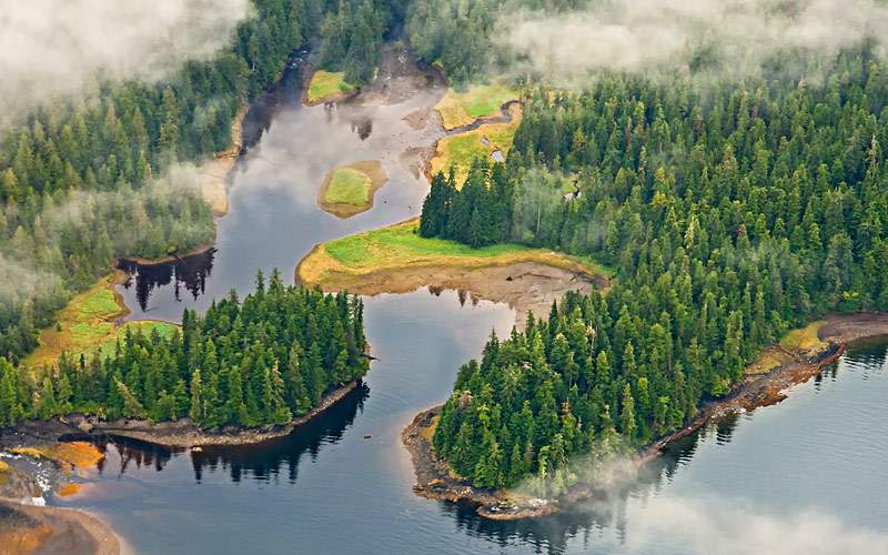view of Tongass Forest Alaska Crystal Cruises