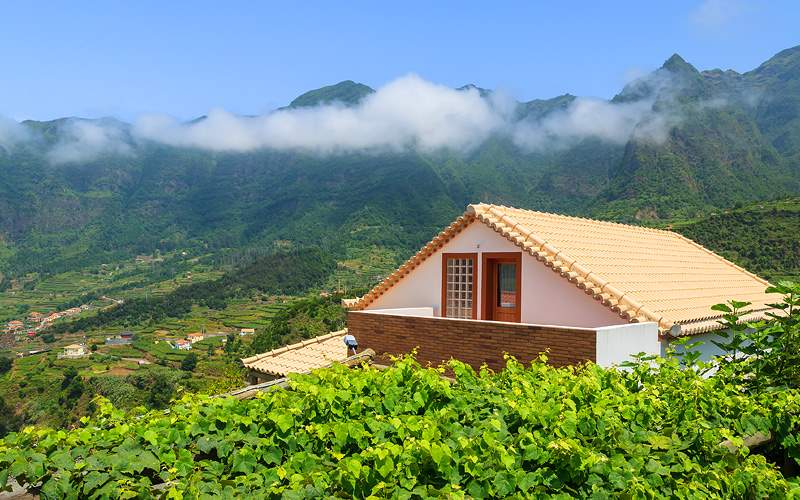 Vineyard Madeira Island, Portugal Crystal Cruises