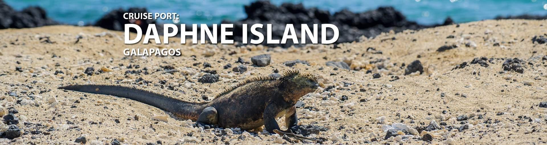 Cruises to Daphne Island Galapagos