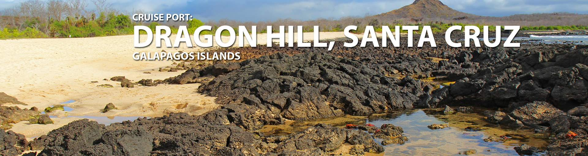 Cruise to Dragon Hill (Santa Cruz), Galapagos
