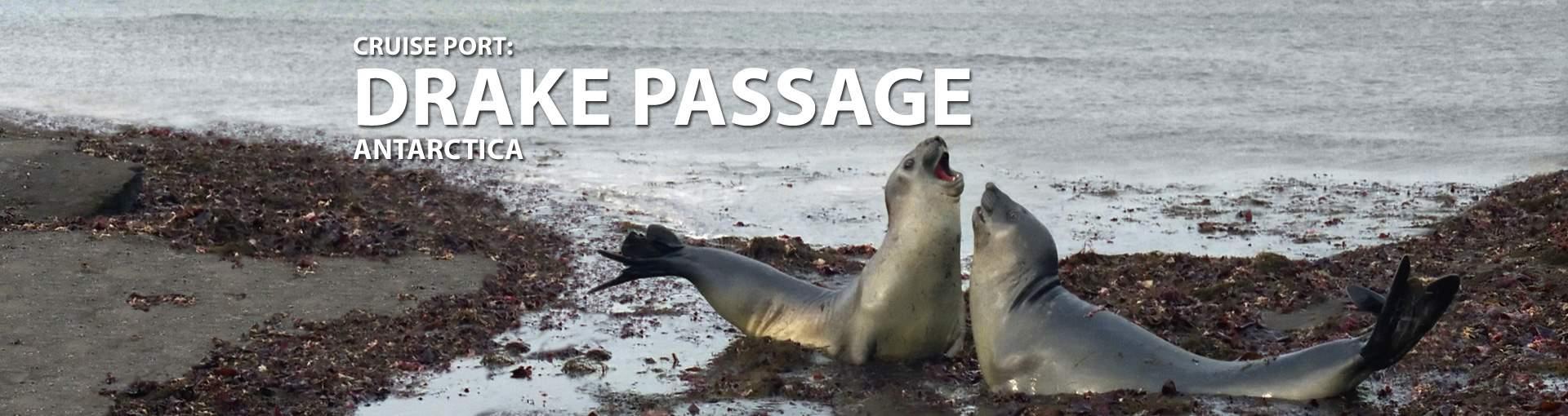 Cruises to Drake Passage, Antarctica