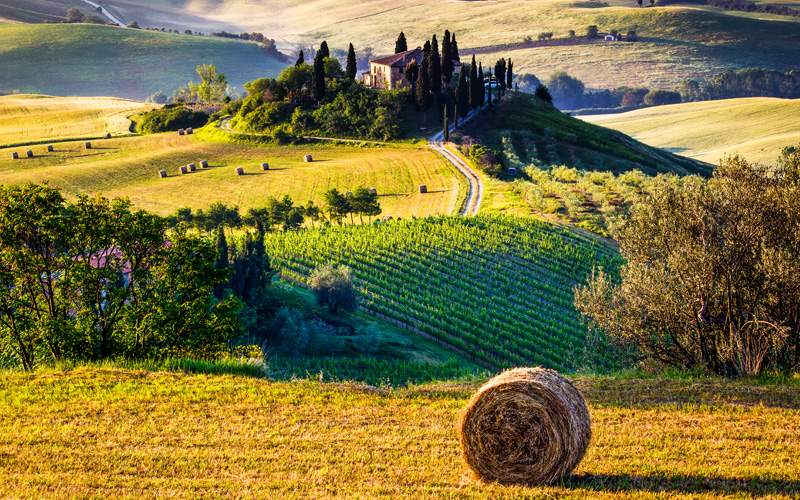 Europe Cruisetours, Tuscany, Italian Countryside