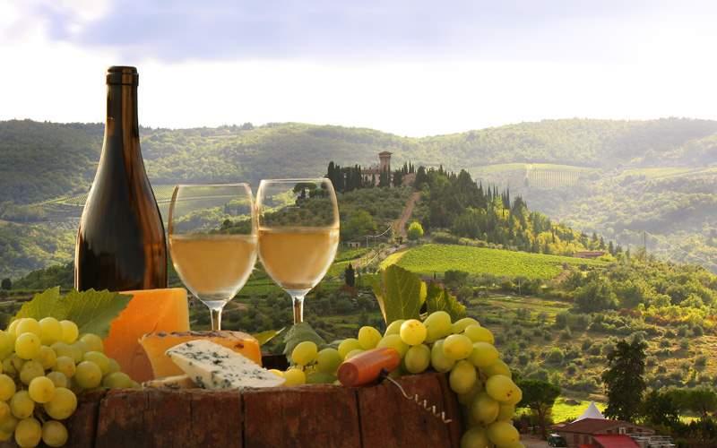 Europe Cruisetours, Vineyard in Chianti, Tuscany