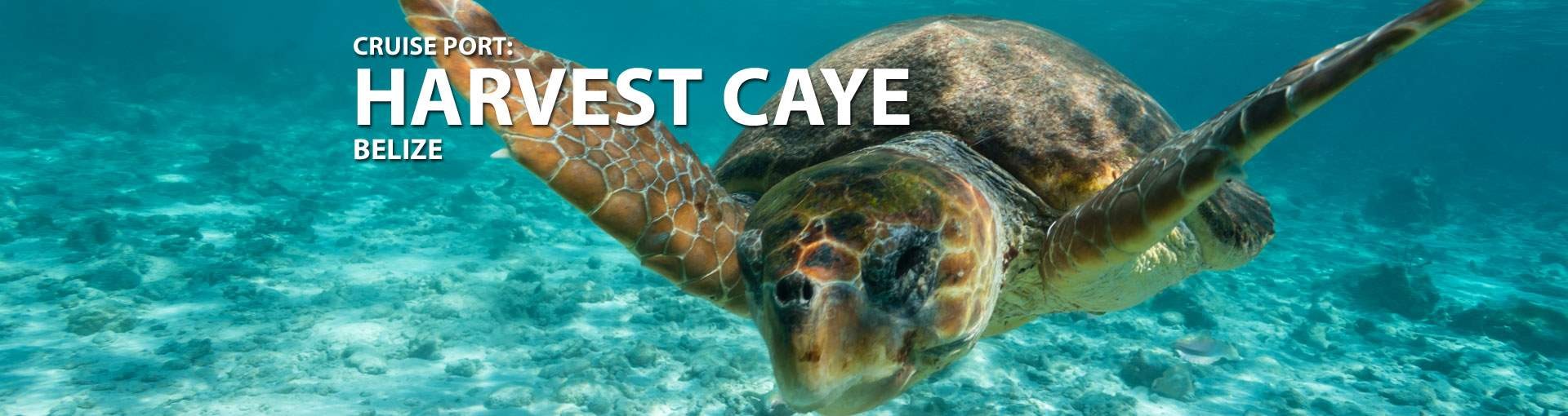 Cruises to Harvest Caye, Belize