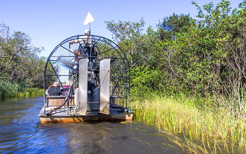 Airboat tour in the Everglades Holland America