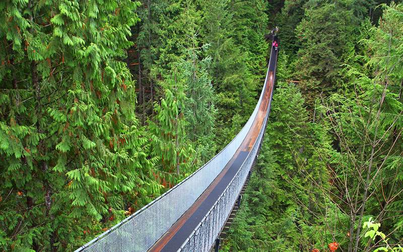 Capilano suspension bridge Canada Holland America