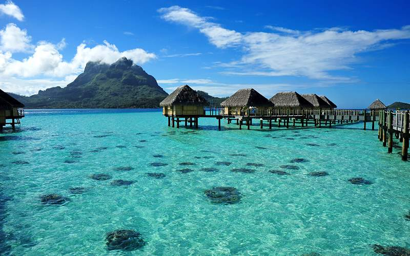 South Pacific Bora Bora Holland America Line