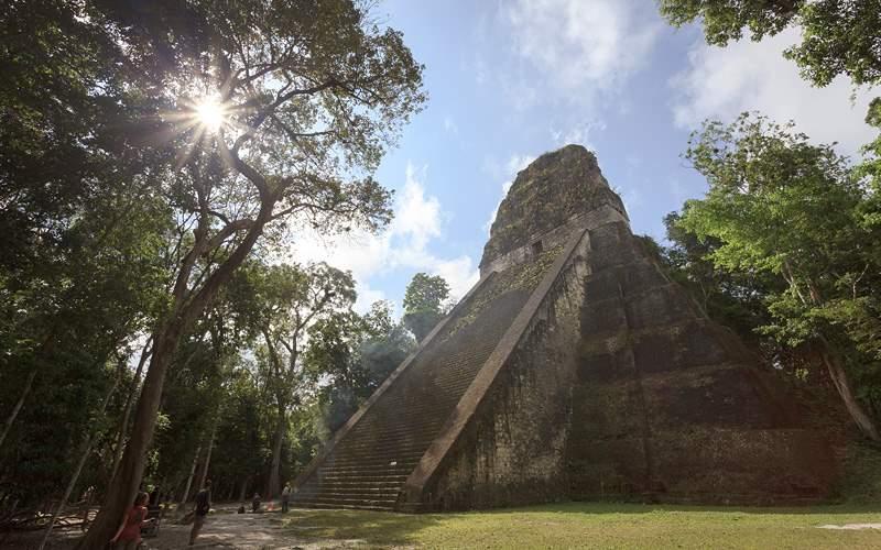 Mayan pyramid in Tikal, Guatemala Holland America