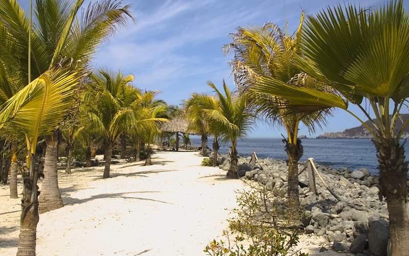 Los Gatos Beach Zihuatanejo Mexico Holland America