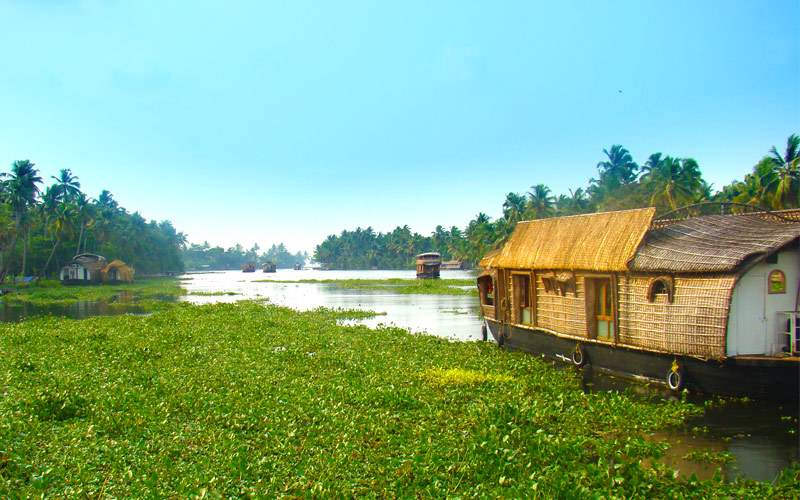 Backwaters of Alappuzha houseboats in India