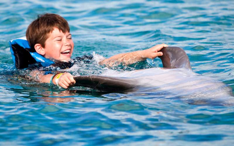 Boy swimming with the dolphins in Mexico
