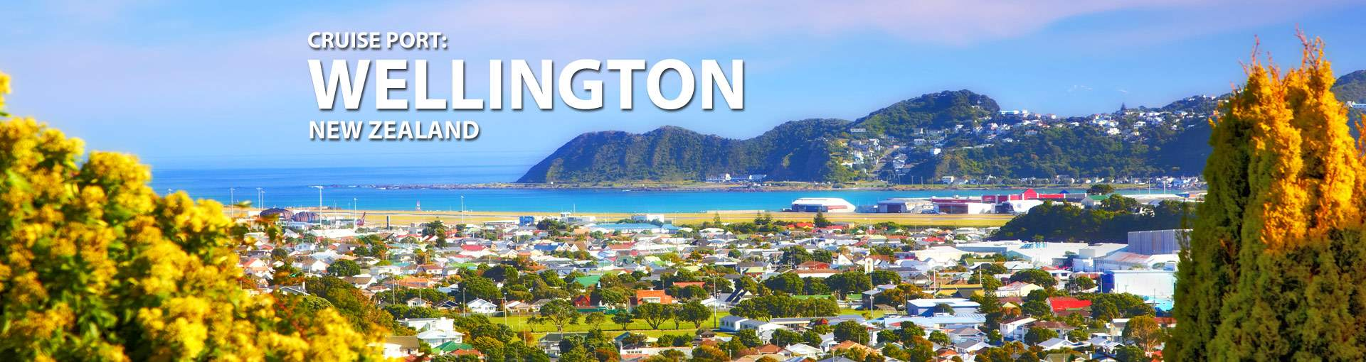 Cruises from Wellington, New Zealand