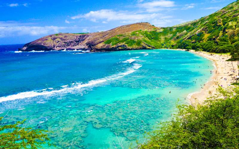 Snorkeling Bay in Oahu, Hawaii