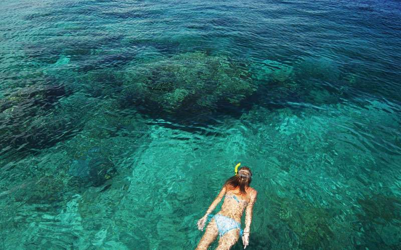 Snorkeling adventure through the Caribbean waters