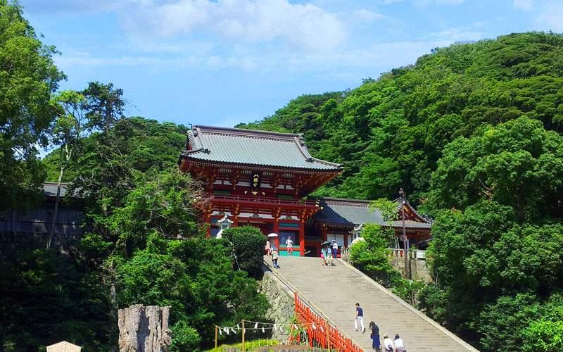 Shine in Japan