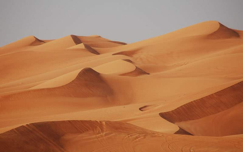 Sand dunes in a Middle Eastern desert
