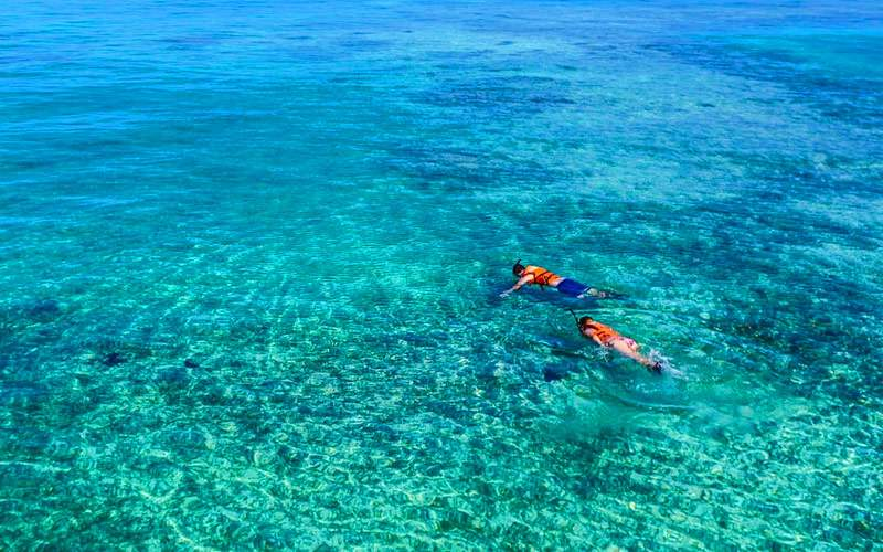 Snorkel in the Grand Cayman Islands