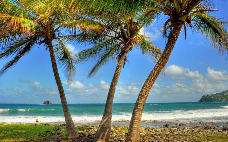 Pigeon Island beach St Lucia Caribbean Norwegian