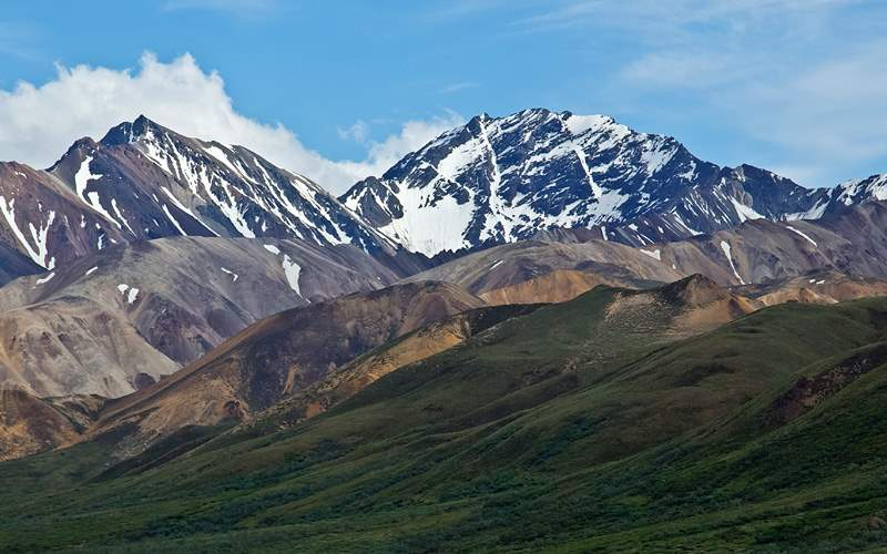 Norwegian Alaska Cruisetours Denali National Park