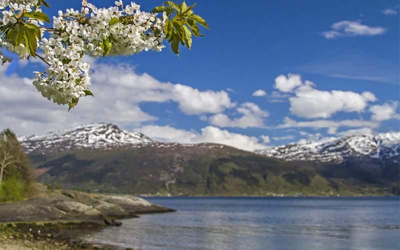 Hardanger Fjord, Norway Norwegian Cruise