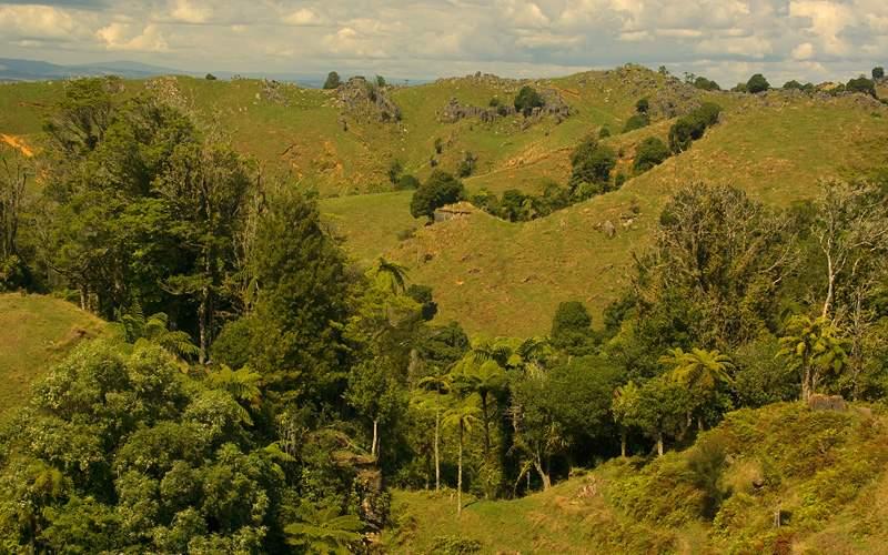 Waitomo, King Country, New Zealand Oceania Cruises