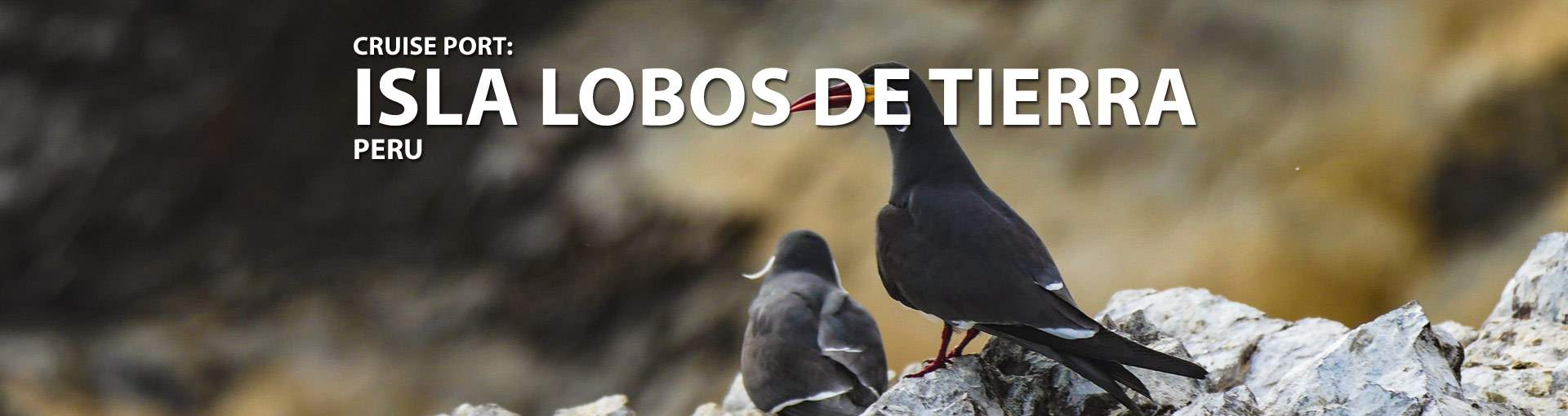 Isla Lobos De Tierra, Peru Cruise Port