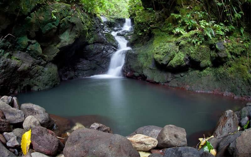 Raiatea French Polynesia South Pacific