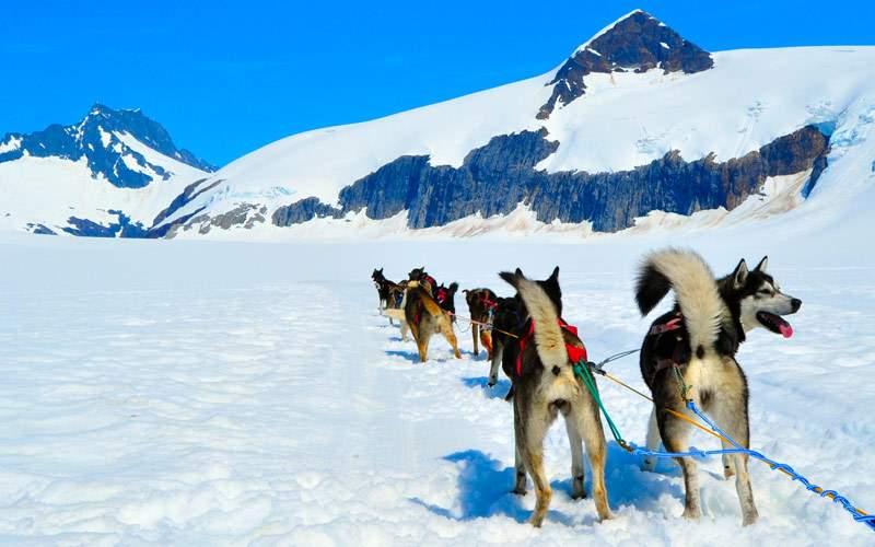Musher Camp Mendenhall Glacier Alaska Regent Seven