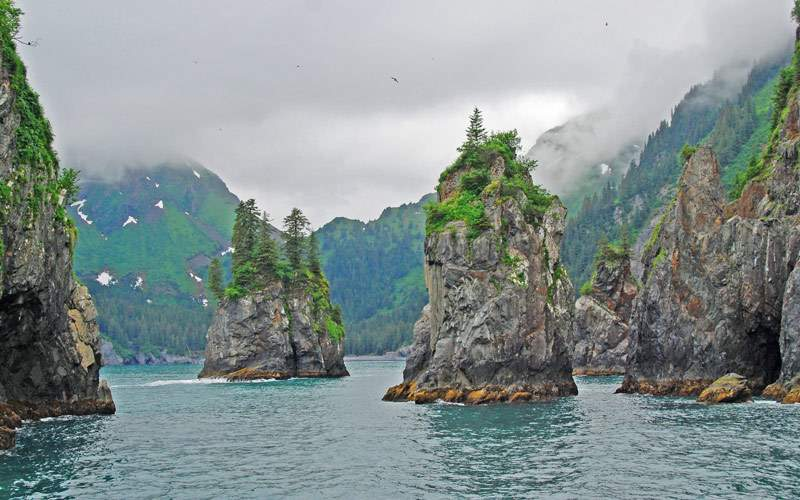 Porcupine Bay Kenai Fjords Alaska Regent Seven Sea